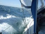 Guernsey bound