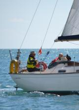 Sailweb1